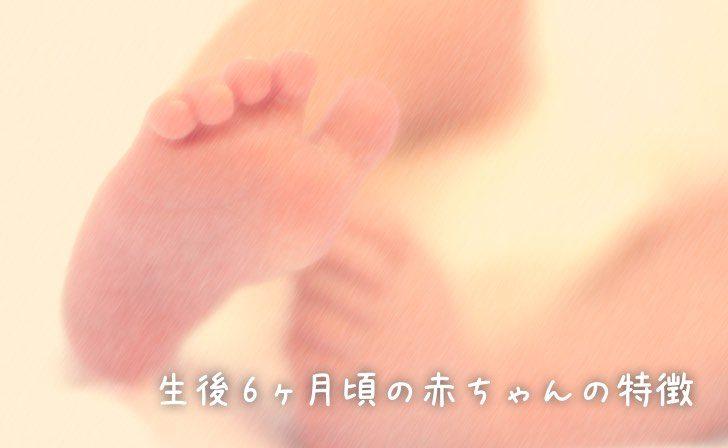 生後6ヶ月頃の赤ちゃんの特徴
