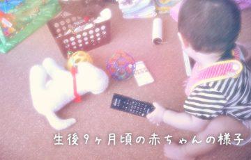 生後9ヶ月頃の赤ちゃんの様子