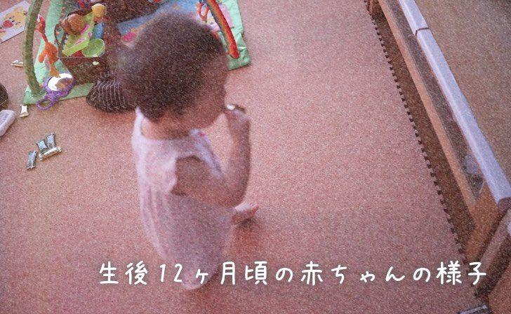 生後12ヶ月頃の赤ちゃんの様子