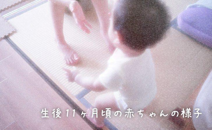 生後11ヶ月頃の赤ちゃんの様子