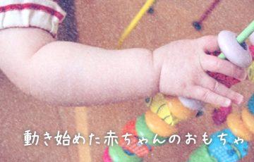 動き始めた赤ちゃんのおもちゃ