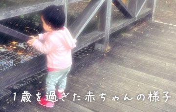 1歳を過ぎた赤ちゃんの様子